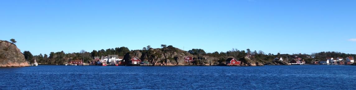 Norsk Havforskerforening